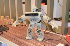robot-rs-100608581-large