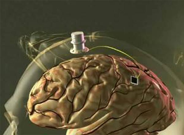 brain.readingx299.jpg