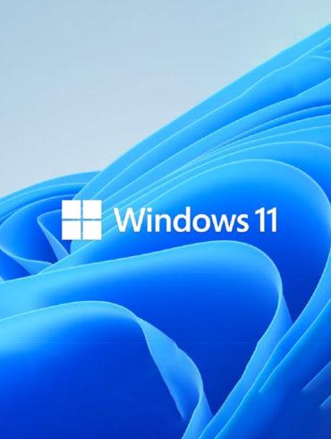 sorpresas windows 11